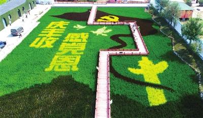 """探營2021年""""中國農民豐收節""""天津主會場"""